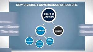 The Ncaa Division I Governance Structure