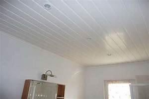 Pose De Faux Plafond : pose faux plafond pvc maison travaux ~ Premium-room.com Idées de Décoration