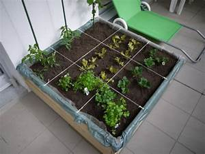 Geotextile Pour Carré Potager : carr potager de balcon photos et questions au jardin forum de jardinage ~ Melissatoandfro.com Idées de Décoration