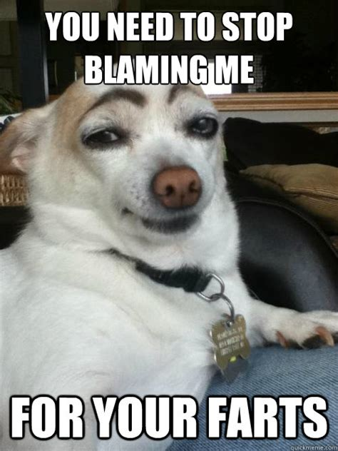 You Need To Stop Meme - you need to stop blaming me for your farts dog did it quickmeme