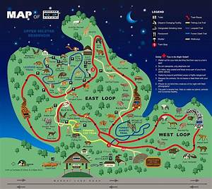 Singapore Zoo Night Safari Skip-the-Line with Buffet ...