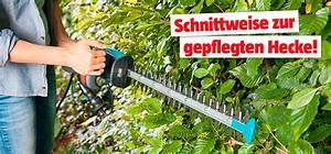 Heckenschnitt Bis Wann : heckenschnitt so schneiden sie ihre hecke bauhaus ~ A.2002-acura-tl-radio.info Haus und Dekorationen