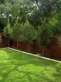 Small, Minimal Backyard  Modern  Landscape  Austin By