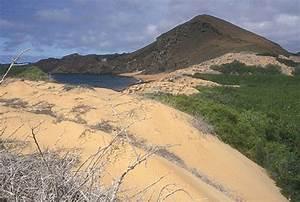 Galápagos2006