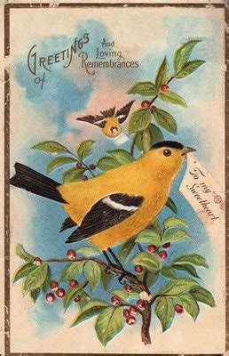 vintage clip art pretty yellow bird  graphics