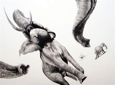 animals striking pencil drawings