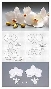 Papierblumen Aus Servietten : pattern orchid by oton franca oliveira hochzeit gloria blumen blumen aus papier und ~ Yasmunasinghe.com Haus und Dekorationen