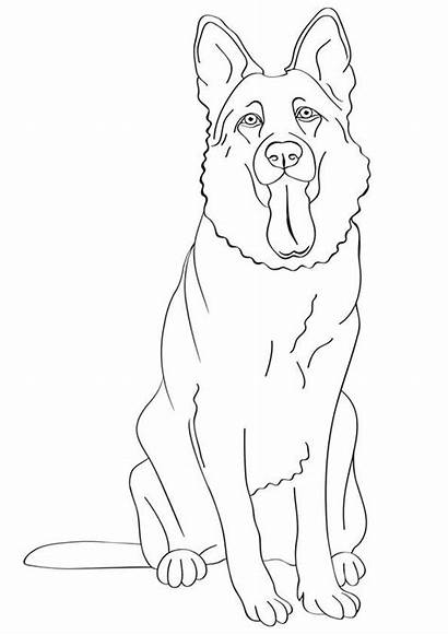 Coloring Shepherd German Pages Dog Printable