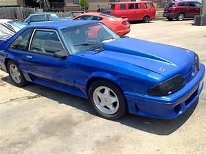 Whiteboy's Mustangs: 1990 mustang GT 5.0 5spd