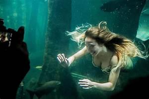 Professional Mermaids Say  U0026 39 Merverts U0026 39  Are Making Their