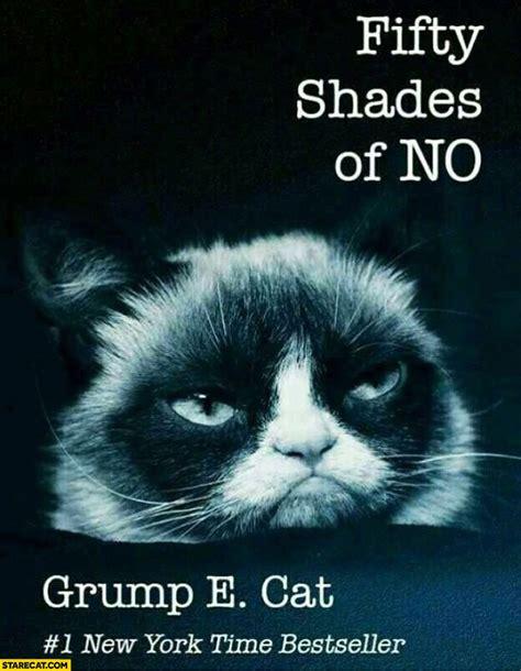 fifty shades   grumpy cat starecatcom
