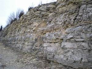 Panoramio - Photo of Limestone (Sedimentary rock)