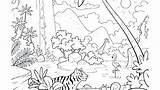 Rainforest Coloring Pages Animals Tropical Printable Drawing Layers Getcolorings Getdrawings Colorings sketch template