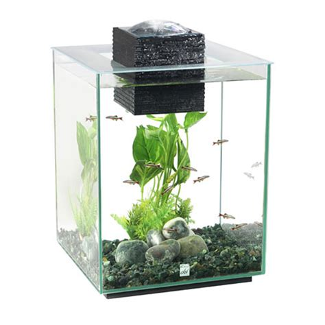 fluval tanks fluval chi aquarium fish tank 19 litre amazing amazon