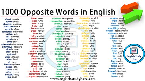 words  english english study