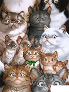 lots of cats a lot of cats 187 free of pictures and animated