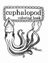 Coloring Squid Pages Printable Mollusc Squids Cephalopod Cuttlefish Octopus Books Items Super Esty Sewing Stuff Hand Designlooter Similar Ocean sketch template