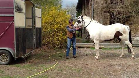 comment monter un cheval seul dans un facilement doovi