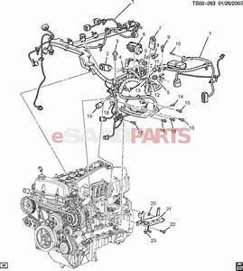 Ford Style 3 0l Wiring Diagrams