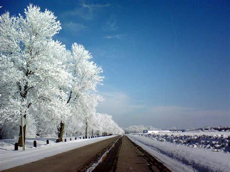 Frost (temperature) - Wikipedia