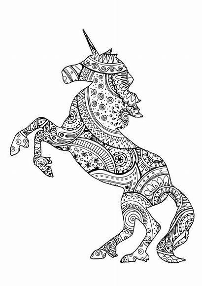 Unicorn Licorne Coloring Mandala Coloriage Licornes Zentangle
