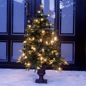 Weihnachtsbaum Led Außen : led au en weihnachtsbaum tannenzauber online kaufen bei g rtner p tschke ~ Markanthonyermac.com Haus und Dekorationen