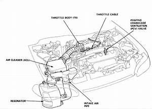 Honda Civic Lx 1999  At Idle And In Park The Engine Surges From 1000 To 1500 Rpm  What Are The