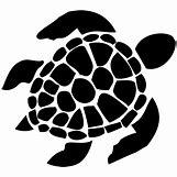 Hawaiian Sea Turtle Clipart   1000 x 1000 jpeg 59kB