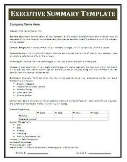 executive summary templates excel  formats