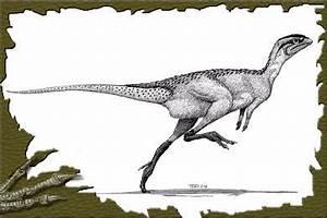 Ornithopode : définition de ornithopode