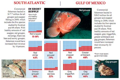 overfishing commercial study fishermen southeast year cost grouper costs fishing