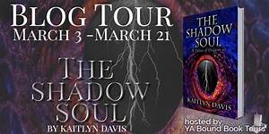 """Desert Rose ☯ Reviews: *Tour Stop & Review* """"The Shadow ..."""