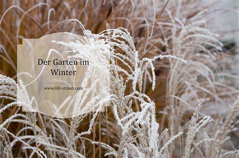 Gräser Winterfest Machen by Muss Den Garten Winterfest Machen Winterfiter Garten
