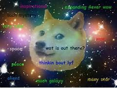 Doge Memes  Da Dog...