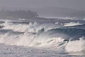 cyclone dina ile de la