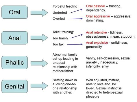 22. Freud's Structure Of Personality