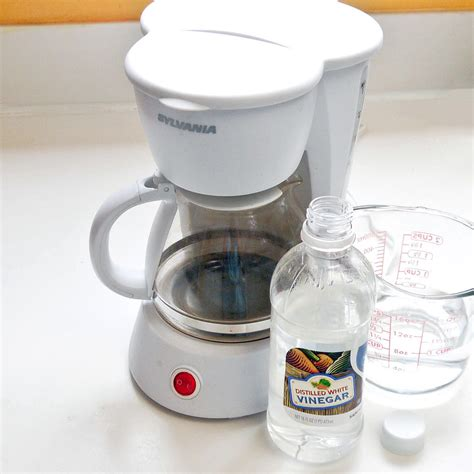 how to clean a coffee maker how to clean a coffee pot popsugar smart living