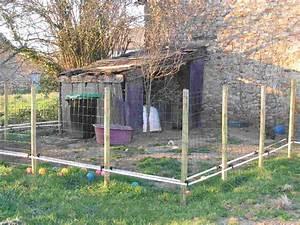 Cloture Chien Jardin : amenagement et installations necessaires pour les cochons nains ~ Melissatoandfro.com Idées de Décoration