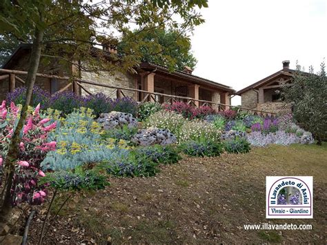 progetti piccoli giardini privati progettazione giardini gratis progetti giardini