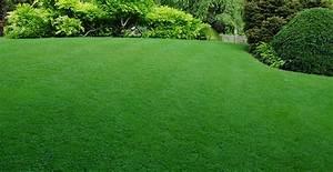Paysager Son Jardin : top jardin votre paysagiste villerupt ~ Dallasstarsshop.com Idées de Décoration