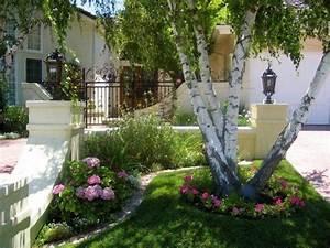 Petit Arbuste Fleuri : am nagement petit jardin devant la maison quels arbres ~ Premium-room.com Idées de Décoration