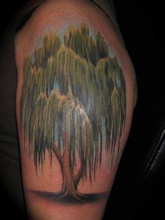 weeping willow tattoo designs ideas  meaning tattoos