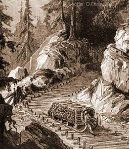 Schlitter   Ouvrier Qui  Dans Les Vosges  Descendait Sur Une Voie De Rondins De Bois  Le Bois