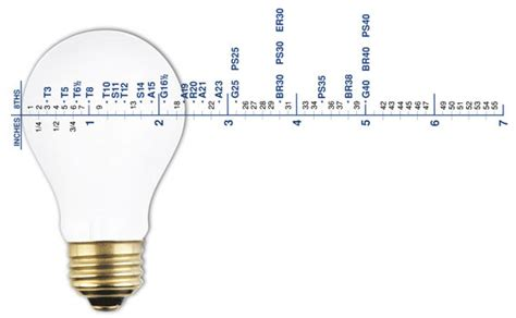 light bulb base dimensions pictures to pin on pinterest