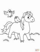 Coloring Horse Birds Horses Printable Drawing Supercoloring sketch template