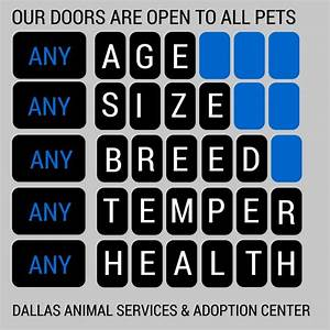 15 best About Dallas Animal Services images on Pinterest ...