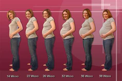 7 Tanda Wanita Hamil First Week Pregnancy World Health Medicine