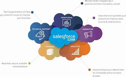 Salesforce Services Strategy Cloud Ecosystem Cycle