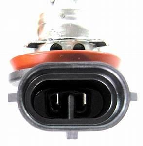 Chevrolet Malibu 2009 2012 20965912 Headlight Wiring Harness : impala malibu headlight and fog light wiring harness ~ A.2002-acura-tl-radio.info Haus und Dekorationen