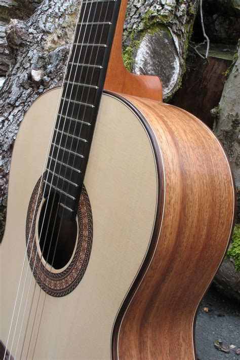 Classical Guitar Back and Sides of Indian Walnut - Classic ...